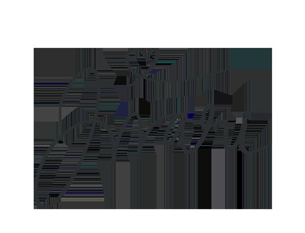 inari fernandezin nimikirjaimet